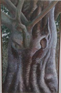 欅の巨木(中美展)